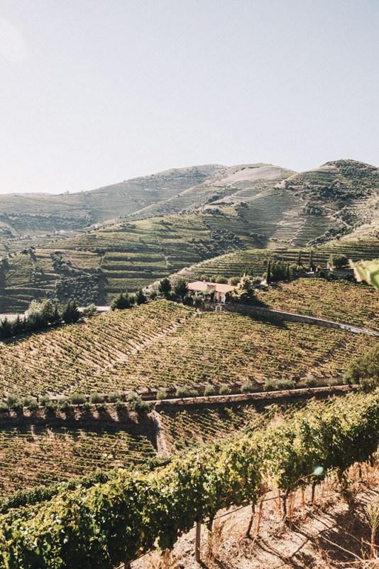 Douro Valley Dona Vale Maria