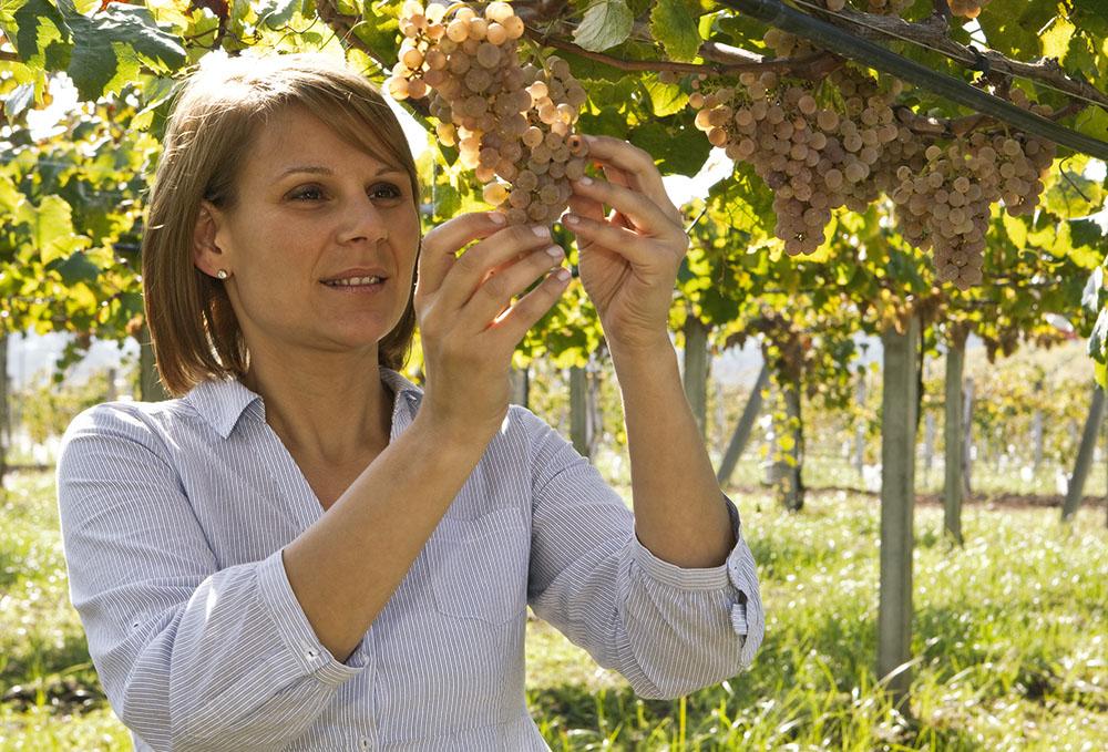Bodegas Martín Códax winemaker Katia Álvarez