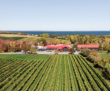 Nova Scotia harvest review Jost Vineyards