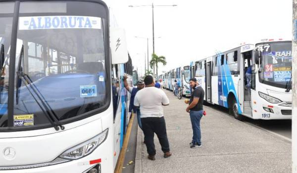 buses guayaquil paro