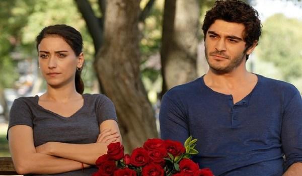 amor de familia novela turca