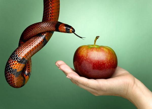 El pecado mortal y el pecado venial qué diferencia hay?