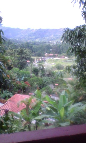 View from our room at Madre Tierra