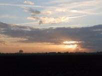 Fenland skies