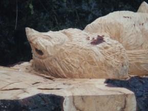 Hedgehog - Arnold