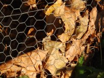 Fully loaded leaf cage