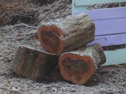 Logs at Wilford