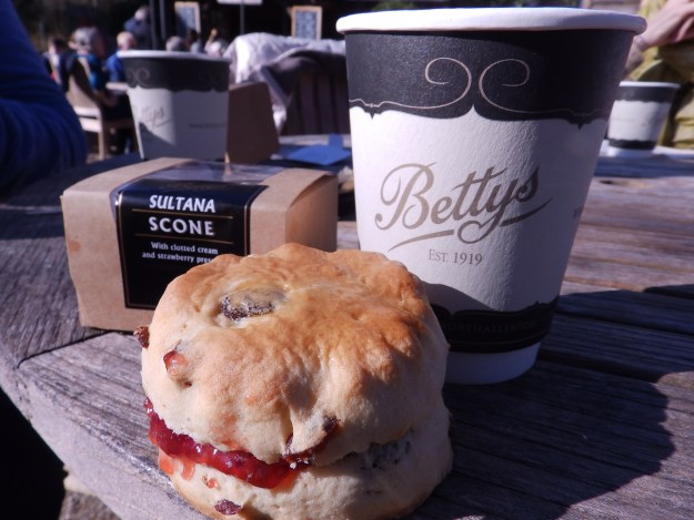 Tea, scones and sunshine. Bettys, Harlow Carr