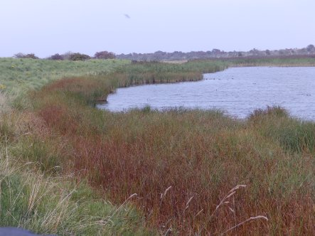 Gibraltar Point, Lincolnshire
