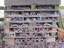 Bug hotel at Attenborough