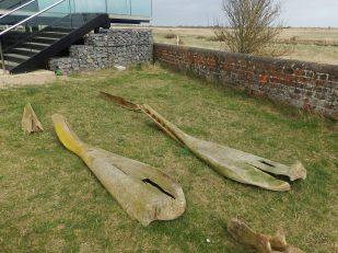 Whale bones at Gibraltar Point