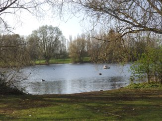 The Duck Pond at Orton Mere