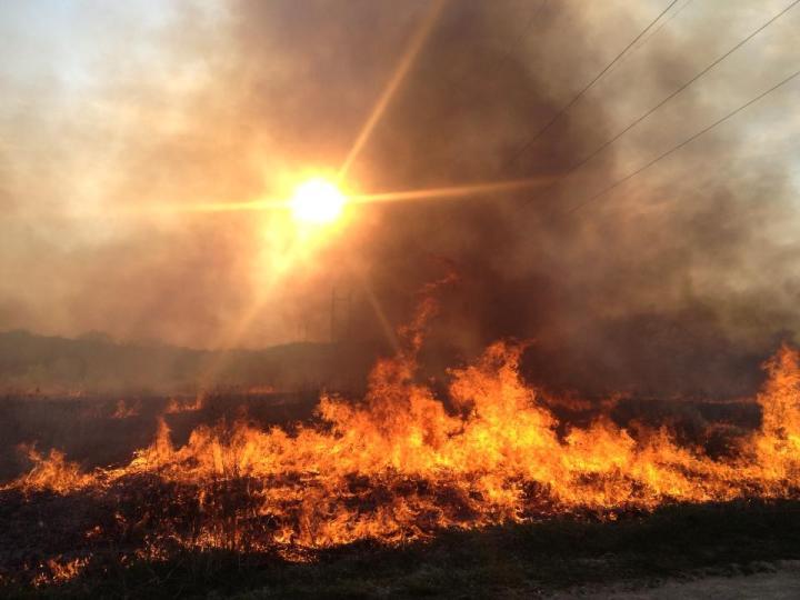 burn at Pheasant Branch Conservancy
