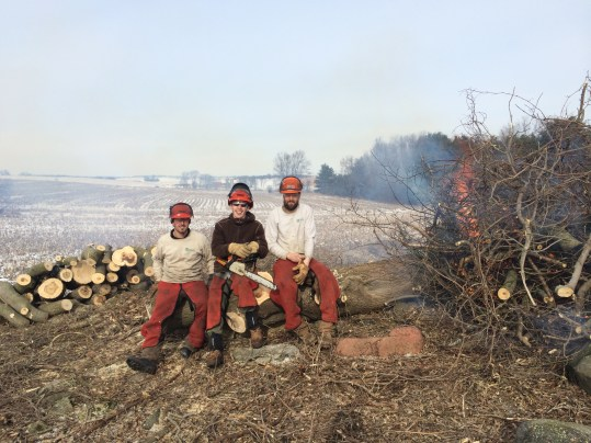Chainsaw crew at Patrick Marsh