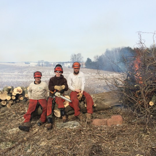 Chainsaw crew at Patrick Marsh