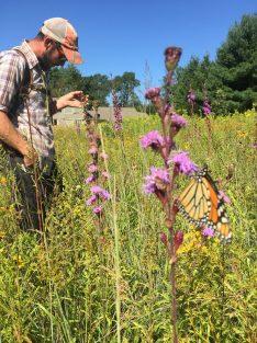 Botanical Survey + Monarch 2019
