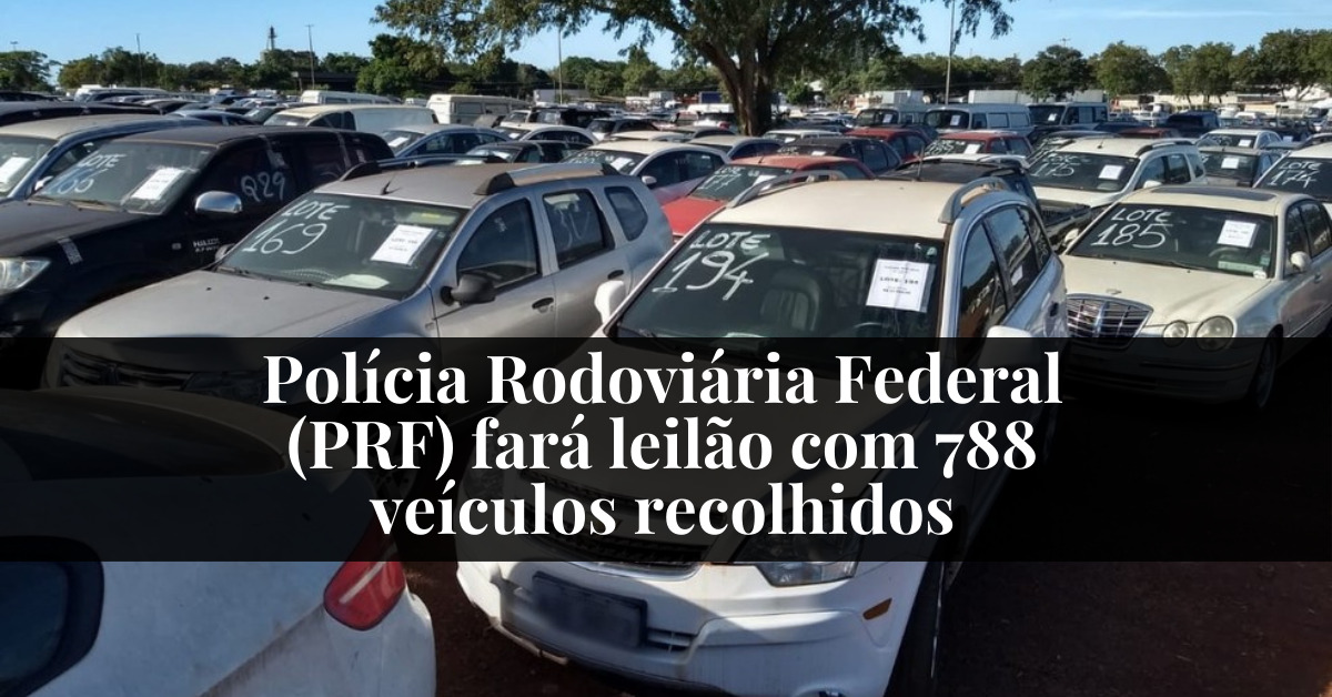 Polícia Rodoviária Federal (PRF) fará leilão com 788 veículos recolhidos