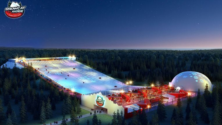 O primeiro parque de neve da Flórida a caminho será inaugurado em novembro