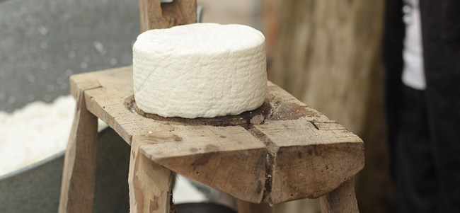 Elaboración de queso con leche cruda