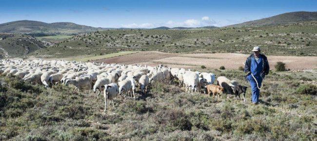 Agricultores y ganaderos ¡no paran!
