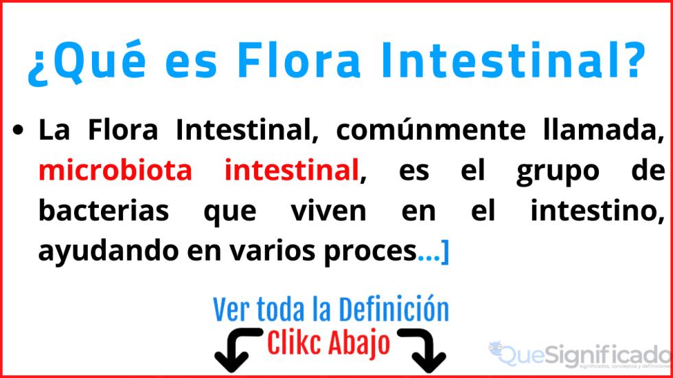 que es flora intestinal significado definicion caracteristicas beneficios