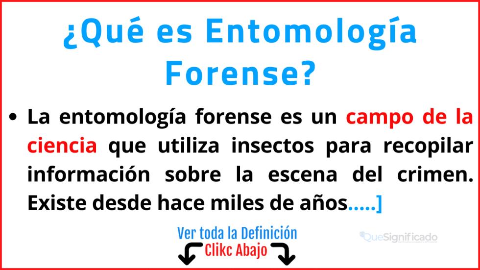 que es entomología forense