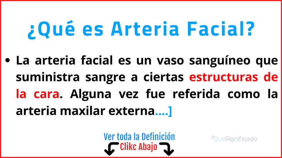 Qué es Arteria Facial