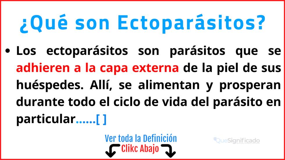 Qué son Ectoparásitos