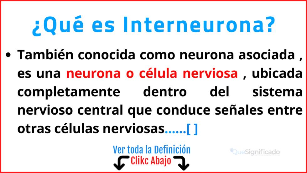 Qué es Interneurona