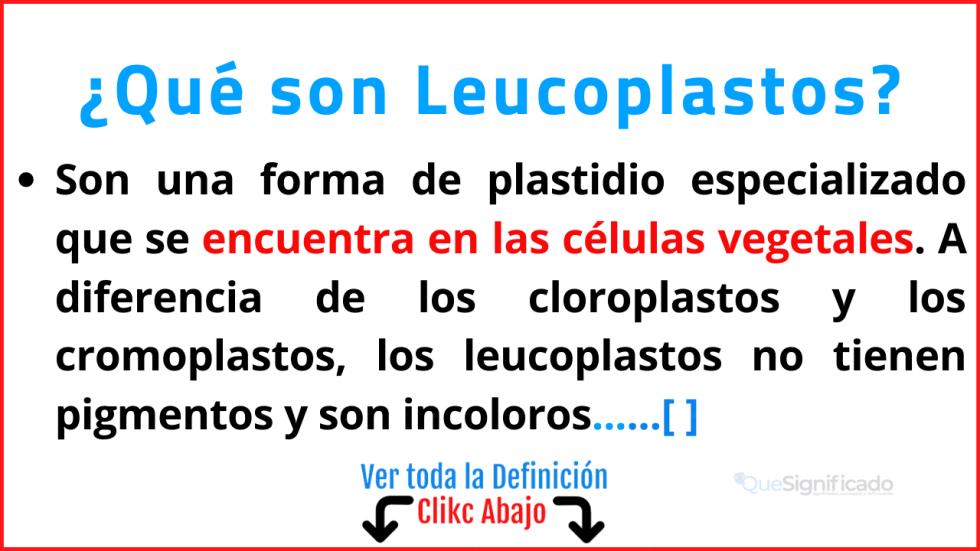Qué son Leucoplastos