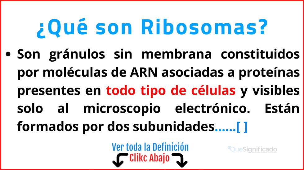 Qué son Ribosomas