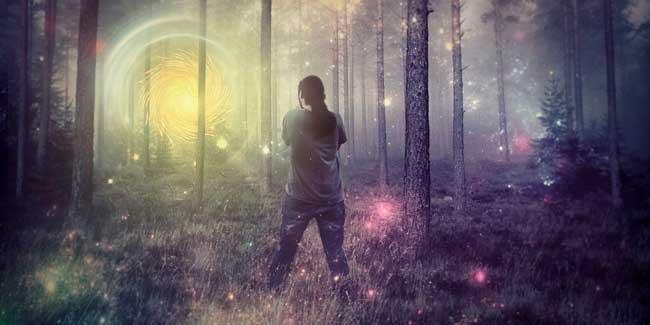 Soñar que te pierdes en un bosque