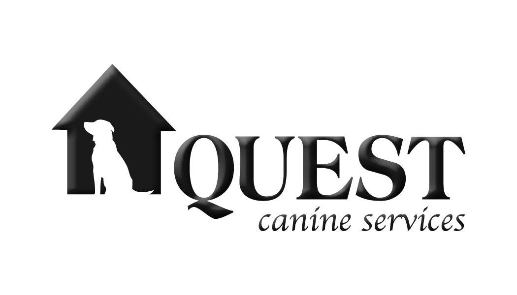 Booking Dog Boarding & Dog Daycare At Quest Canine