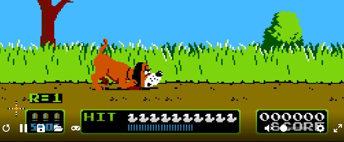 #204 – Duck Hunt