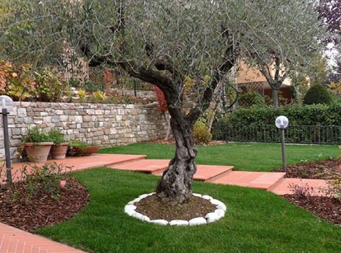 progettare-il-giardino-000