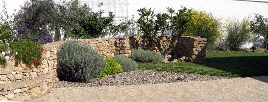 progettare-il-giardino-mediterraneo - Questioni di Arredamento
