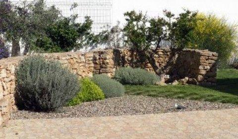 Progetto del giardino di casa questioni di arredamento for Progetto giardino mediterraneo