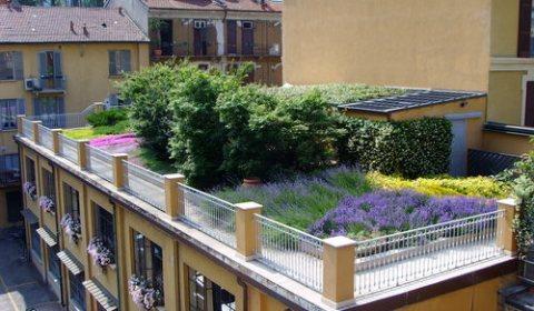 progettare-il-giardino-pensile-002