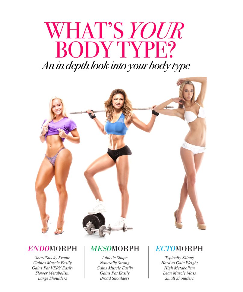what is my body frame type | Allframes5.org