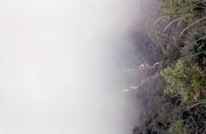 Nohkalikai Falls(3)
