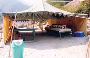 Camping in Rishikesh(7)