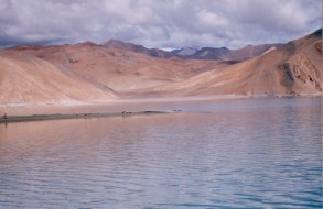 Wilderness vacations in Ladakh(25)