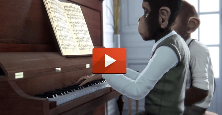 concierto-de-monos