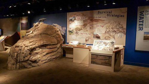 Furnace Creek Visitor Center, el punto de inicio de las visitas por el Valle de la Muerte