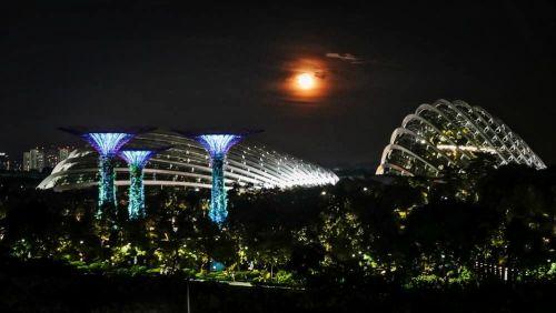 Vista nocturna de los Jardines de la Bahía