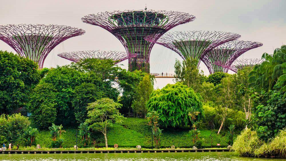 Jardines de la Bahía, una de las principales atracciones de Singapur