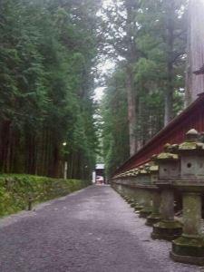 Linternas del Santuario Futarasan