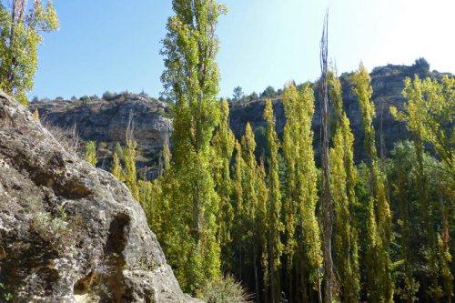 Otoño en el Parque Natural de las Hoces del Río Duratón