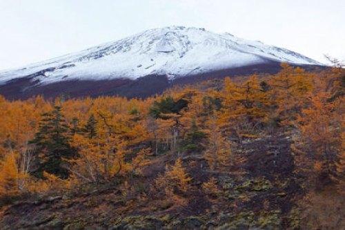 Otoño en el Monte Fuji, una de las épocas más bonitas para visitar la zona