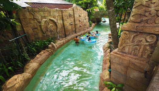 first ever hydro magnetic coaster of Asia, or you can try the thrilling water slides, or just grab a tube and watch the river passing by.  Adventure cove water park on India to singapore trip cost